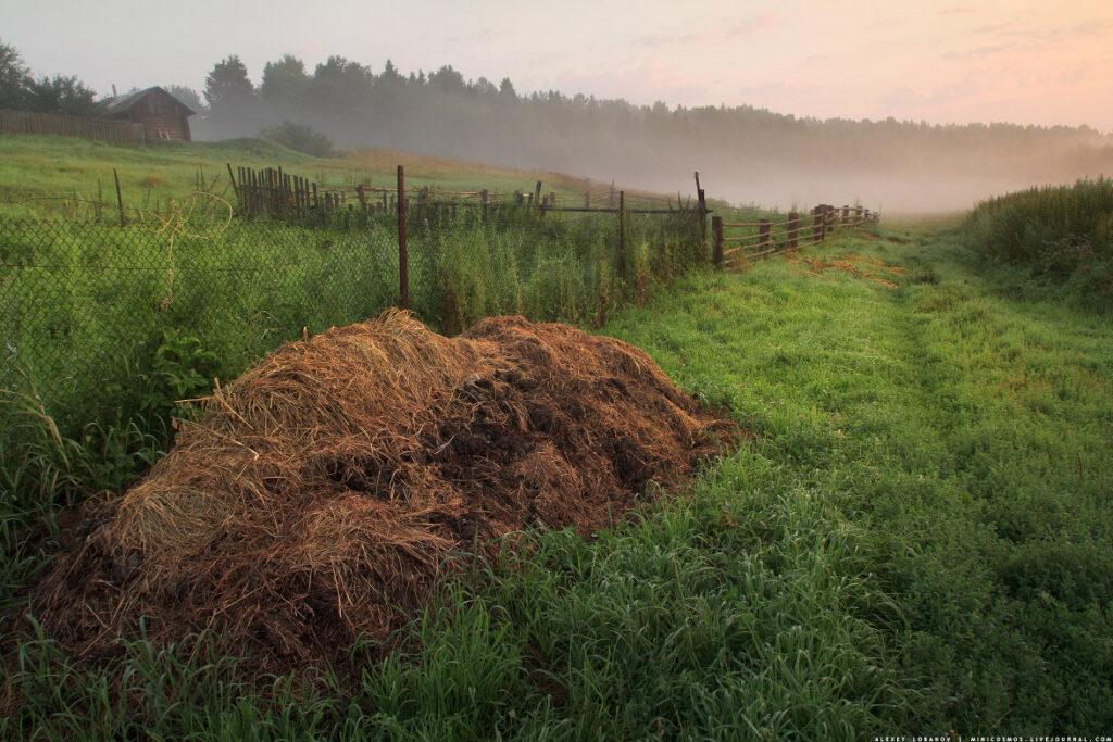ranch-green-country-farm